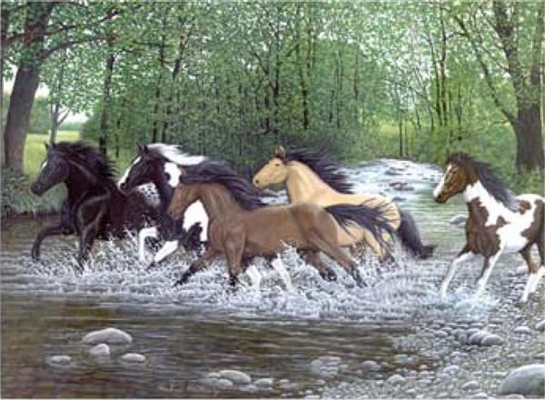 Kreativní set na malování - Běžící koně sada na malování podle čísel Royal & Langnickel