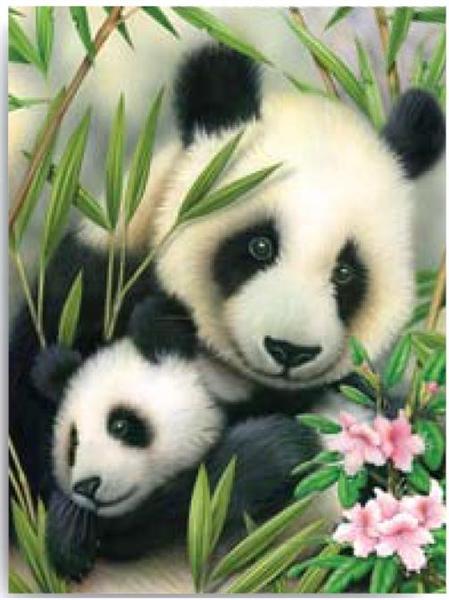 Kreativní set na malování - Panda s mláďátkem sleva -50% sada na malování podle čísel Royal & Langnickel