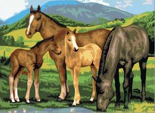 Kreativní set na malování - Koně na louce A3 sada na malování podle čísel Royal & Langnickel