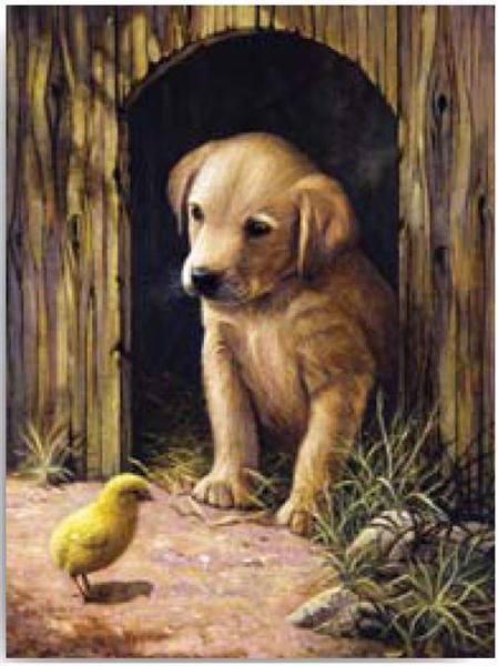 Kreativní set na malování - Štěňátko labradora sleva -50% sada na malování podle čísel Royal & Langnickel